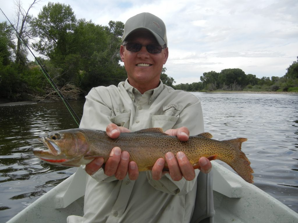 Rare Cut Throat Trout for the North Platte River in Wyoming.