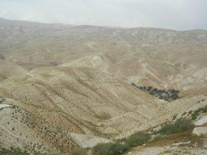 River Jordan, Jericho, Dead Sea 023